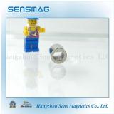 De professionele Permanente Magneet van de Ring van het Neodymium voor Motor, Generator
