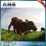 Modifica di orecchio animale dell'identificazione RFID di radiofrequenza per bestiame