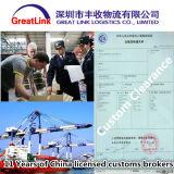 Frete de mar de LCL de Shanghai, Tianjin, Qingdao, Shenzhen China a Italy