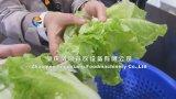 Déshydrateur végétal industriel, machine de séchage végétale avec le certificat de la CE