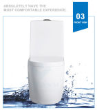 Weidansi en céramique lavent vers le bas la toilette d'une seule pièce de courroie (WDS-T6108)