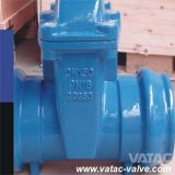 Gegoten Iron Extended Stem Gate Valve met Groove, Push, rf of FF Ends