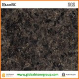Populäres Black Pearl Granite für Countertops/Tiles
