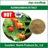 Pó natural do extrato de 100% Ashwagandha