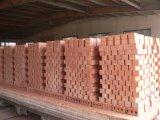 Het Maken van de baksteen Machine en de Oven van de Tunnel van de Baksteen van de Klei
