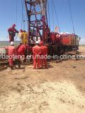 Bomba de cavidade progressiva de petróleo e petróleo Bomba de parafuso Bomba de PC Bomba de terra