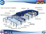 Magazzino prefabbricato della costruzione di basso costo per memoria (FLM-005)