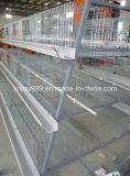 Strumentazione del pollo dell'azienda avicola per la Camera di pollo