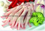 고품질 스테인리스 닭 가금 농기구