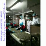 有機性健康食品のヒマワリの種5009