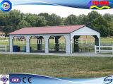ISO 9001 de Lichte Luifel/het Afbaarden/Carport van het Frame van het Staal (ssw-c-003)