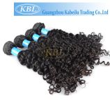 Brasilianisches Kinky Curly in Hair Extensions