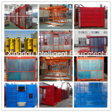 MID Speed Capacity 1000kg Double or Single Cage를 가진 Building를 위한 건축 Hoist Lift