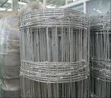 Amerikanischer/Scharnier-Verbindungs-Bereich-Zaun des Australier-2.5mm dehnbarer/Rotwild-Zaun