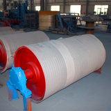 Mine-Duty Pulley/Conveyor Pulley/Light Pulley/Head Pulley (diamètre 800mm)
