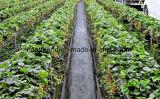 Nuova rete fissa tessuta del limo del PE per il giardino di agricoltura
