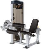 Máquina Bodybuilding de la prensa del pecho de la aptitud del equipo de la gimnasia de las fuentes de Cheaer China de la alta calidad