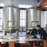 Stabilimento di trasformazione automatico dell'acqua potabile per acqua pura