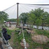 天候抵抗力があるステンレス鋼の動物園の網動物機構
