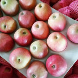 Calidad superior de la manzana fresca de Qinguan