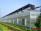 Дом Venlo зеленая с структурой системы охлаждения и алюминиевых сплава топления и