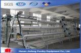 Heet verkoop het Automatische Systeem van de Kooi van de Kip van Jinfeng