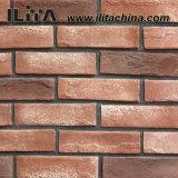Tijolo artificial da parede de pedra do material de construção, revestimento da parede da casa de campo (YLD-18031)