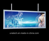 LED壁に取り付けられた展覧会ショーの競技場の体育館Alu。 フレームの細いライトボックス