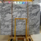 Losa de mármol blanca de Italia Arabescato, precio de mármol blanco