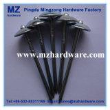 Galvano Heiß-Tauchte galvanisierten Regenschirm-Kopf-Dach-Nagel ein