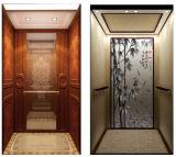 Pequeño coche de elevador casero, elevador residencial barato de la elevación
