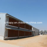 高品質Prefabricated Chicken HouseおよびChicken Farm