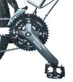 Alの合金のLCD Displayerが付いている完全な中断山の電気バイク