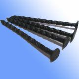 De hoge Ringvormige Spijker van het Ijzer van de Steel van de Ring van de Draad Quanlity