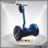 Vespa eléctrica de la movilidad del carro al aire libre