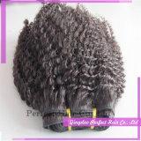 試供品の毛はアフリカのねじれた巻き毛の組みひもの毛を束ねる