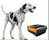 Qualität Pets wasserdichter GPS-Verfolger Tk108 GPS, der Einheit aufspürt