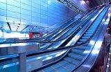 Tipo interno escada rolante do passageiro para o supermercado