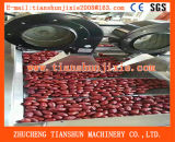 Beste Verkaufs-Frucht-trocknende Maschine/Entwässerungsmittel-oder Gemüse-Trockner Tsgf-60