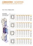Elevatore domestico LMR della villa dell'elevatore di Aksen