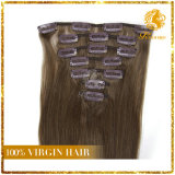 Clip d'Afro-américain dans le cheveu brésilien normal de Vierge d'extensions de cheveux humains