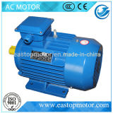 Asynchroner Motor Wechselstrom-Y3 für Pumpen mit Aluminium-Stab Läufer