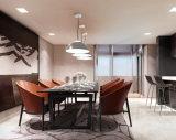금속 홈 부엌 대중음식점 바 (직경 15.8in)를 위한 펀던트 점화 SMD LED 거는 램프