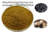 Poudre noire nutritive d'ail de fermenter