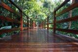 Escalier/balustrade en bambou tissés par brin de prix usine
