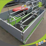 Het Goedkope Automatische het Werpen van de Prijs Krat van uitstekende kwaliteit voor de Box van de Zeug van het Varken