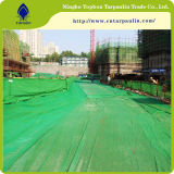 buona rete di sicurezza della costruzione di verde della prova della polvere di prezzi 60GSM