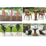 コーヒーテーブルとセットされる自然な庭の家具