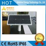 30W DEL a semi intégré/réverbère solaire séparé pour le jardin/route/voie/ferme/frontière de sécurité/mur