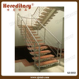 Railing лестницы нержавеющей стали просто конструкции установленный стороной (SJ-H1321)